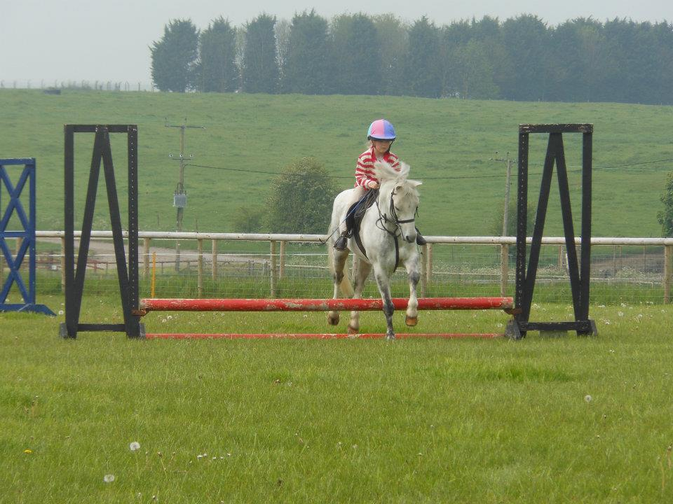 Summer clear round showjumping